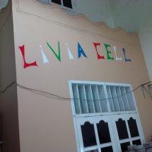 Livia Cell
