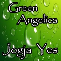 GREEN ANGELICA JOGJA YES