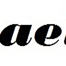 Logo Chaelin