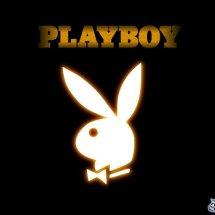 Logo Playboy Store