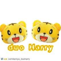 duoHarry