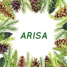 Preloved Arisa