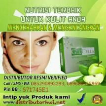 Distributor HWI herbal