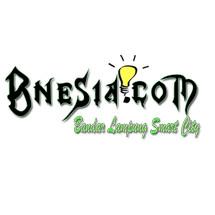 bnesia