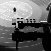 vinyl101