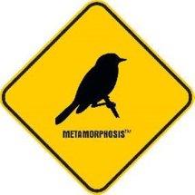 Metamorphosis TM