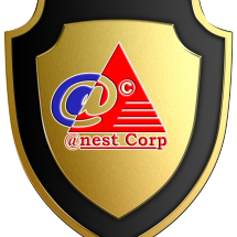 ANEST CORP