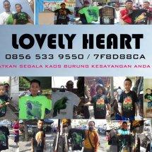 Lovely heart kaos kicau