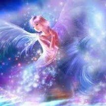 Angel Online Store