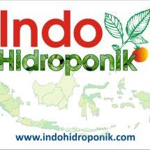Indo Hidroponik