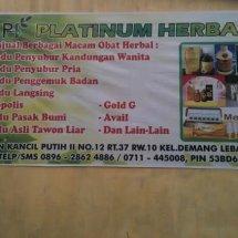 obat herbal palembang