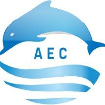 AEC Store