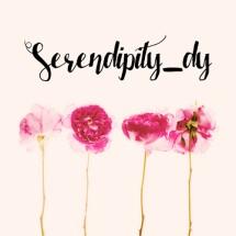 serendipity_dy