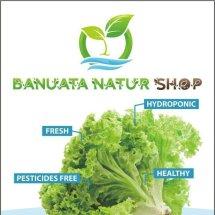BANUATA NATUR SHOP