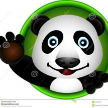 3 Panda Shop