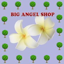 big angel shop