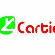 carticstore