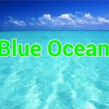 BLUE OCEAN STORE
