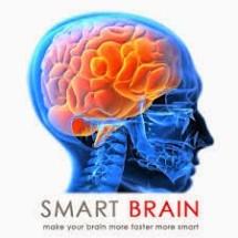 Nutrisi Otak OSB