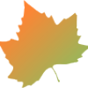 Logo Maple Leaf