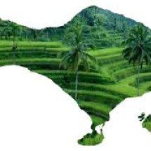 Goda Gado Bali