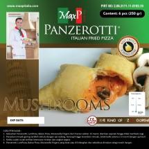 MaxP-Panzerotti