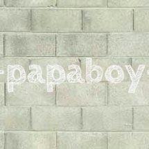 Papaboy Shop