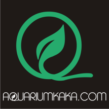 aquariumkaka