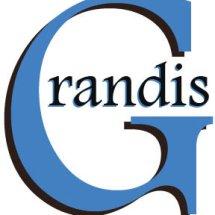 Grandis IT Solution