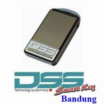 DSS Smart Key Bandung