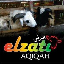 ELZATI AQIQAH