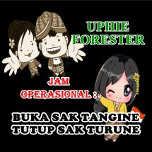 Uphie Forester