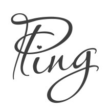 Ping Store