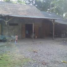Revive Shop