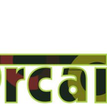 Orcaizer