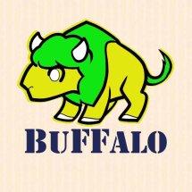 Buffalo Shop