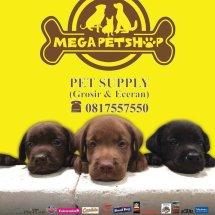 mega pet shop