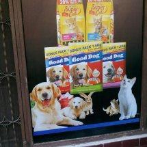 Dog Pet Shop