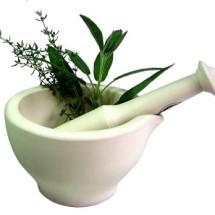 Dunia Herbal 77