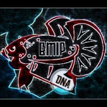 DNA Betta IND Cupang