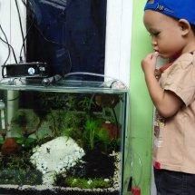 NabilFish