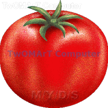 TWOMART COMPUTER