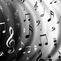 Distorsi MusicShop