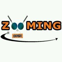 Logo Zooming