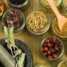 Larisa Herbal