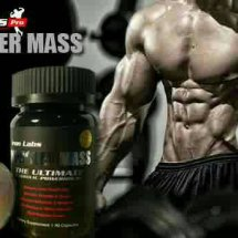 King Supplement