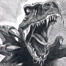 Raptor Online Shop