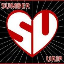 Logo Sumber Urip Neng Dunyo