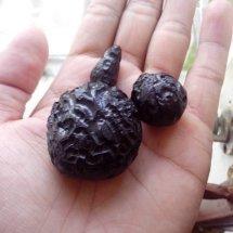 Batu Satam Khas Belitung