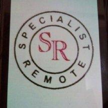 Logo Specialist Remote